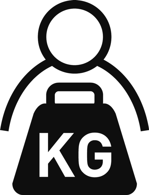 Icon Swing